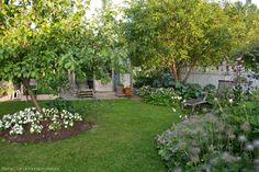 Kanelia ja kardemummaa: kasvimaa Kuta, Stepping Stones, Garden, Outdoor Decor, Plants, Home Decor, Stair Risers, Garten, Decoration Home
