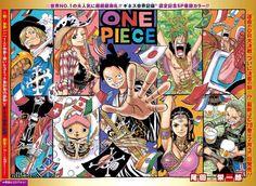 ONE PIECE, Straw Hat Pirates, Mugiwara Pirates, Title Chapter 790