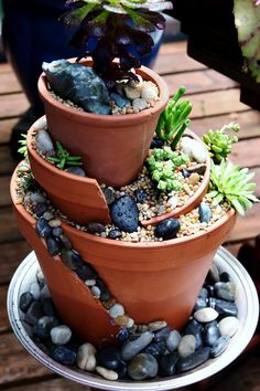 my succulent garden:) Vegetable Garden Planning, Backyard Vegetable Gardens, Outdoor Gardens, Mini Gardens, Fairy Gardens, Broken Pot Garden, Garden Pots, Garden Crafts, Garden Projects