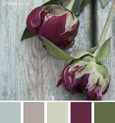 Plum and sage color scheme