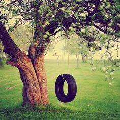 so want a tire swing (never too old to have one)