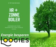 HR+ zonneboiler Herbs, Tips, Herb, Counseling, Medicinal Plants