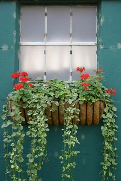 With these Flower Box Ideas you can easily place plants and flowers to numerous areas to your home. It's one of the oldest additions in gardening.