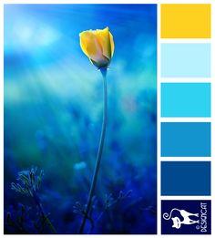 ideas for bath room yellow blue inspiration Blue Paint Colors, Bedroom Paint Colors, Blue Colour Palette, Colour Schemes, Navy Colour, Yellow Quilts, Design Seeds, Deco Design, Vintage Design
