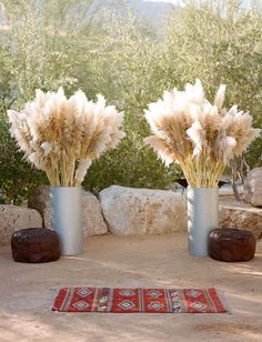 "Pampas Grass tall arrangements (different vases) to create an ""alter area"" on the sun deck - BRIDE to ORDER and SHIP AHEAD"
