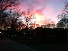 Vasaparken by night