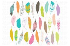 Feather ClipArt by SA ClipArt on @creativemarket
