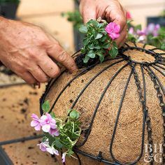 Flower Garden How to Plant a Hanging Basket - Create the perfect container garden with added height with these hanging basket planting tips. Hanging baskets look great on shepherd's hooks out in the middle of a garden, or hanging from a patio or balcony. Garden Yard Ideas, Garden Planters, Lawn And Garden, Flower Planters, Garden Tips, Patio Plants, Small Yard Flower Garden Ideas, Deck Flower Pots, Front Garden Landscape