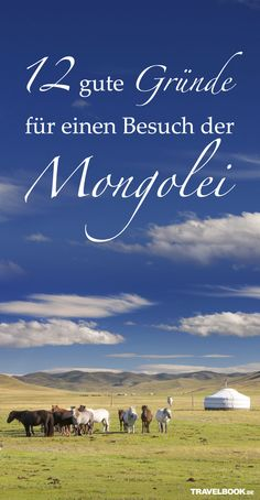 12 Gründe, warum man mal die Mongolei besuchen sollte  http://www.travelbook.de/deutschland/Warum-Sie-mal-die-Mongolei-besuchen-sollten-613336.html