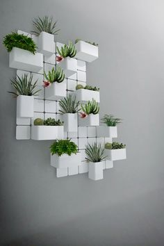 Creative Ways To Wall Display House Plants With Cactus Plant Wall, Plant Decor, Deco Nature, Decoration Plante, Deco Floral, Hanging Pots, Terraria, Indoor Plants, Indoor Gardening