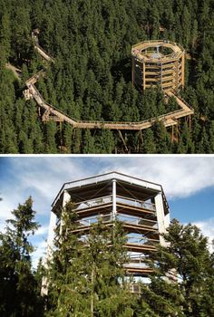 11 Treetop Walks Designed For Nature Lovers // Spend the day walking through the trees and test your nerves on rope stations through the Lipno Treetop Walkway in the Czech Republic. Whitefish Mountain, Futuristic Architecture, Contemporary Architecture, Outdoor Playground, Suspension Bridge, Mountain Resort, Closer To Nature, Tree Tops, Adventure Awaits