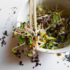 Sprout, cucumber, sesame and dulse salad