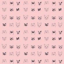 Cats Wallpaper – Pink