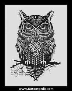 Different%20Owl%20Tattoos%201 Different Owl Tattoos