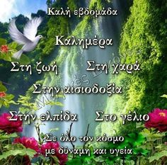 Good Night, Good Morning, Herbs, Mondays, Greece, Drink, Coffee, Pictures, Quotes