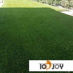 football field turf in United Kingdom – Top-Joy International Trading (Shanghai) Co. Artificial Grass Garden, Artificial Turf, United Kingdom Image, True Homes, Football Field, Golf Courses, Backyard, The Unit, Patio