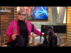 Carrie Fisher Brings Dog, Gary, to Interview About New Star Wars Film - Cheezburger Gary Fisher, Frances Fisher, Carrie Fisher Interview, Debbie Reynolds Carrie Fisher, Tv Series Free, War Film, Animal Room, Fandom Crossover, Disney Stars