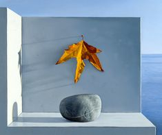 David Ligare, Still Life with Rock and Leaf, 1994. Oil on canvas.