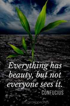 Collection of beautiful inspirational quotes to share on your social media.