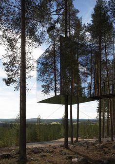 Invisible Treehouse | (10 Beautiful Photos)