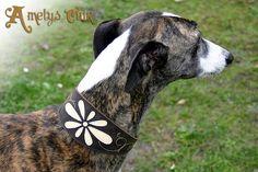 Collier pour chien - Création cuir Ametys Cuir à Uzeste - Bazas en Gironde