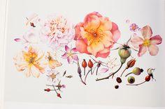 Treasures of Botanical Art, part one via Krisatomic. this would make an amazing tattoo.
