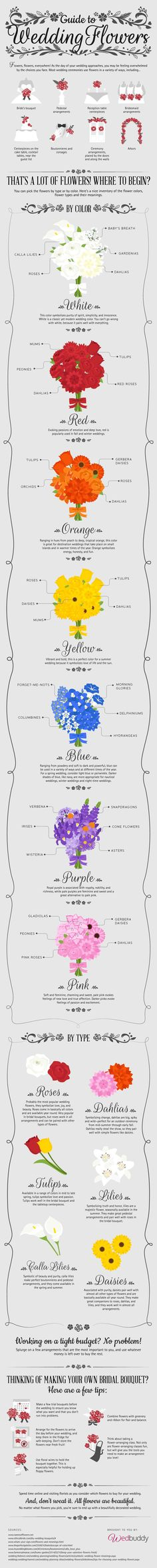 The flowers you choose for your perfect wedding day are important. They'll not only be photographed, but will be instrumental to the décor and theme of your wedding. Because flowers are an integral part of your wedding, you'll want to make sure you know all you can about the flowers you choose. Use this infographic to help you decide what flowers best suit your personal style at:http://blog.wedbuddy.com/guide-flowers-ig/