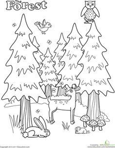 Preschool Kindergarten Nature Worksheets: Forest Coloring Page