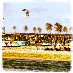 Egipt w Grudniu za 1400zł/7 dni Obok szkółki kite! Polecamy napisz do nas kite@remplustravel.pl lub odwiedź na na facebooku www.facebook.com/remplus.kitesurfing