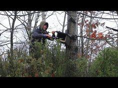 Budki lęgowe (porządki, poprawki, obserwacja gniazdujących ptaków) - YouTube