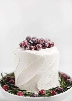 Sugared Cranberries - The Merrythought