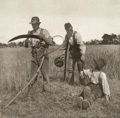 Harvesters, Peter Henry Emerson