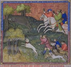 Muckley 1386 Hunting The Hunting Book of Gaston Phébus: Paris, Bibliotheque nationale, MS fr. 616 (Manuscripts in Miniature) [Hardcover] Wilhelm Schlag (Author)
