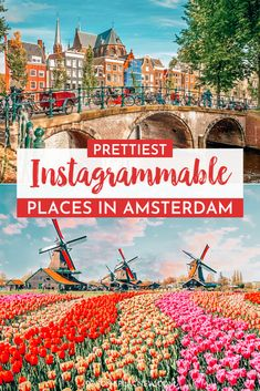 A 2 day Amsterdam itinerary with sightseeing and travel tips, and a quick day trip to the countryside. Find out how we spend 2 days in Amsterdam itinerary. Amsterdam Itinerary, Amsterdam Travel Guide, Europe Travel Guide, Travel Destinations, Travel Deals, Budget Travel, Traveling Europe, Vacation Deals, Backpacking Europe
