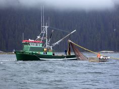 Alaska Salmon Seiner F/V Amiee O
