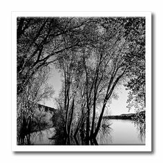 ht_49670_2 Jos Fauxtographee Realistic - Black and White of Trees and Bushes Reflecting on Water at Baker Dam Reservoir in Southern Utah - Iron on Heat Transfers - 6x6 Iron on Heat Transfer for White Material Jodie Fauxtographee,http://www.amazon.com/dp/B0083B4DL0/ref=cm_sw_r_pi_dp_sjfrtb0G8G9NQPH5