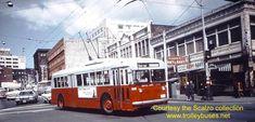 1963 Seattle Trolley Buses | Seattle Trolleybus Photos Third Period Seattle Photos, Public Transport, Coaches, Buses, Affair, Period, Third, Transportation, Vans