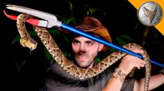 Coyote Peterson Carefully Handles a Poisonous Pit Viper at the Costa Rica Amphibian Research Center