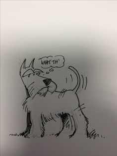 Schnauzer Art, Miniature Schnauzer Puppies, Schnauzers, Animal Sketches, Animal Drawings, Bunny Book, Animal Doodles, Dog Pin, Dog Rules