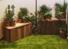 Rustic wooden benches, pop-up garden, pot plants