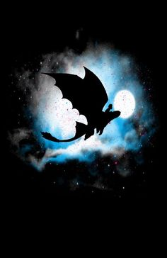 Hiccup and Toothless on their Night Flight. Hands down, one of the coolest pictures of them ever!