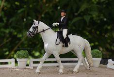 Schleich Dressage | Customized Schleich horse with handmade tack and prop