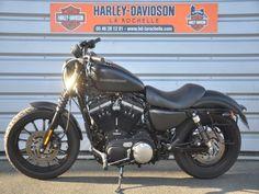 Harley-Davidson 883 iron d'occasion   Harley Davidson France