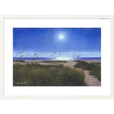 Global Gallery 'Coastal Moon' by Diane Romanello Framed Graphic Art Size: 2
