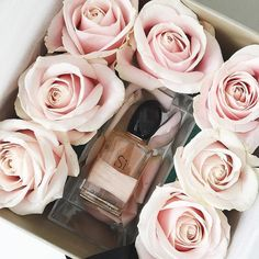 Samantha Maria: The new @giorgioarmanicosmetics Si Rose Signature perfume  Can't wait to try this out!