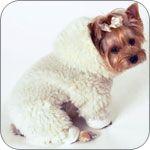 Shearling Dog Jumpsuit