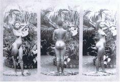 Sarah's Story A Colonial Showpiece