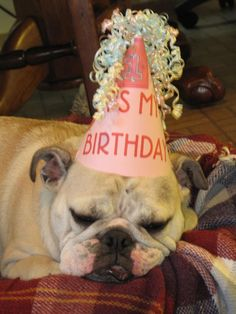 it actually IS my birthday today! Where can I find that hat?!