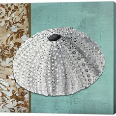 Megan Duncanson 'Silver Sea Urchin - Tan Side Border