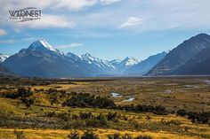 Travel with us, India and abroad. For queries contact us at +91 9999 5353 50 or mail us at info@wildnest.in / www.wildnest.in  #newzealand #beautifulnz #mountcook #mtcook #purenewzealand #valleyview #drive #romanticholiday #travelphotography #photography #travelgram #instatravel #instagood #instapic #sunnyday #travelers #travelphoto #beautifulsky #wildnest #travelwithus #click #traveldiaries #wanderlust #wanderer